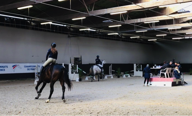 Equestrians riding 3-year-old mounts on the flat