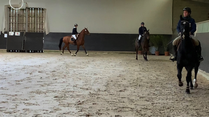 Equestrians riding 3-year-old mounts in a group over a very small jump course